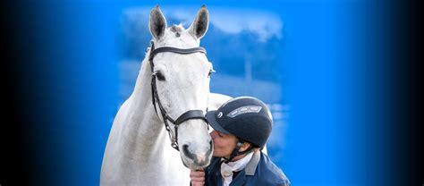 calming equine horse horses calm supplements