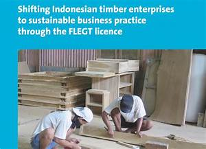Impact Sheet  Timber Indonesia  U203a Resource Library
