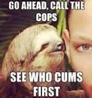 Sloth Asthma Meme - rape sloth meme pinterest sloths and hilarious
