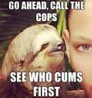 Sloths and Hilarious on Pinterest
