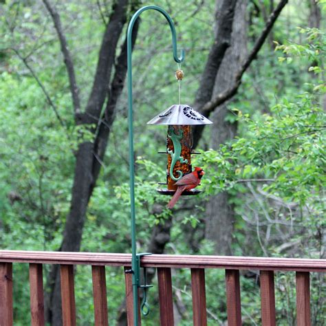 deck mounted bird feeder hanger birdcage design ideas