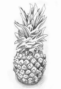 Pineapple Sketch still life by HollowIchigoBanki on DeviantArt