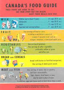Canada Food Guide Groups