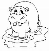 Hippo Coloring Hippopotamus Animals Cartoon Outline Drawing Colouring Animal Printable Disney Drawings Sheet Character Draw Getdrawings sketch template