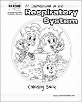 Respiratory System Coloring Pages Drawing Printable Template Circulation Sketch Pulmonary Popular Tags Getcolorings Print Getdrawings Library Clipart Circle sketch template