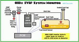 Evap Evaporative Emission Control System  Obd Ii Evap