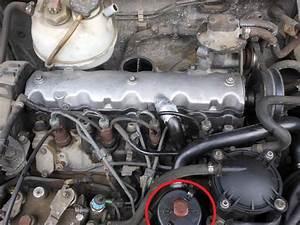 Niveau D Huile Trop Haut Moteur Diesel : planete 205 cherche mon bouchon de remplissage d 39 huile diesel ~ Medecine-chirurgie-esthetiques.com Avis de Voitures