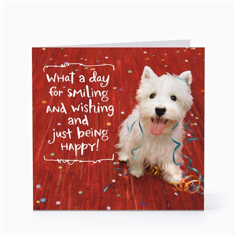 Find the perfect happy birthday message to write in your birthday greeting card. Dog Birthday Card Sayings   BirthdayBuzz