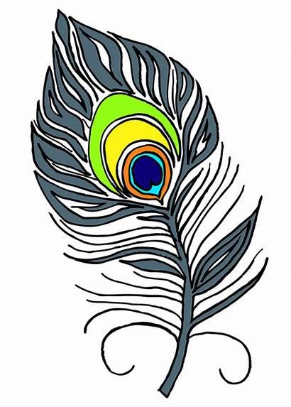 Bulu Merak Burung Peacock Feather Feathers Clip