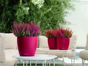 Décoration De Jardin Extérieur : plante ext rieur en pot en 35 id es d co ~ Dode.kayakingforconservation.com Idées de Décoration