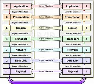 Explain The Osi Reference Model With The Help Of A Diagram