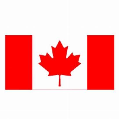 Flag Canada Vector Canadian Clipart Graphics Ai