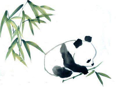 baby panda  bamboo cindy pon pandas panda drawing