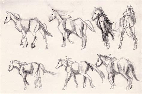 animal drawing animation poses  bobsheaux  deviantart