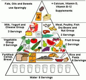 Healthy Food Choices Food Pyramid Food Triangle Food