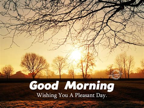 Good Morning Wishing You A Pleasant Day Desicommentscom