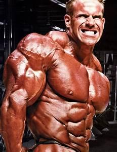 Bodybuilding Arm Workout Gold U0026 39 S Gym