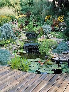 backyard pond garden ideas homemydesign