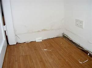 Feuchtigkeit Im Mauerwerk : kellersanierung von aussen das wird schon wieder ~ Michelbontemps.com Haus und Dekorationen