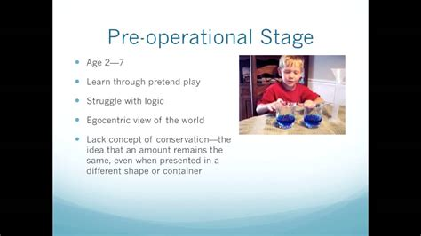 piagets cognitive  language development theory youtube