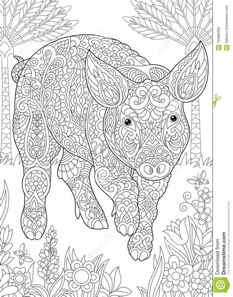 zentangle pig piggy hog stock vector illustration of