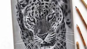 realistic leopard drawing with pastel pencils leontine