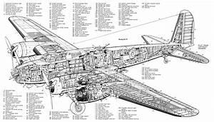 Boeingb17cflyingfortres Jpg  Obrazek Jpeg  3000 U00d71703