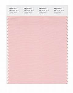 BUY Pantone Smart Swatch 13-1310 English Rose