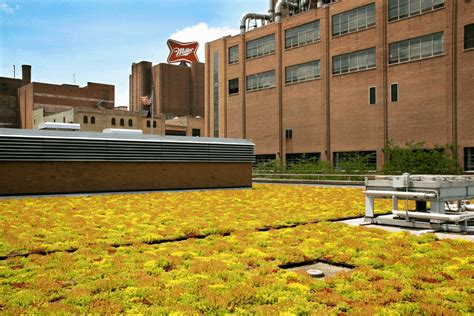 millercoors greenroofscom