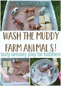 Best 25+ Farm sensory bin ideas on Pinterest