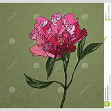 Peony Wallpaper Pattern | 1371 x 1300 jpeg 166kB