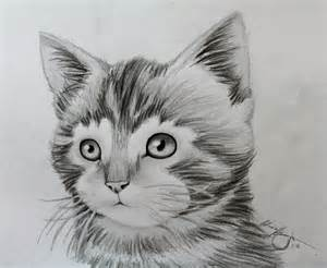 Awesome Sketch Drawings