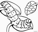 Caterpillar Coloring Pages Butterfly Eggs Egg Printable Cocoon Hungry Very Drawing Cool2bkids Animal Insect Template Printables Getdrawings Clipartmag Sketch Getcolorings sketch template