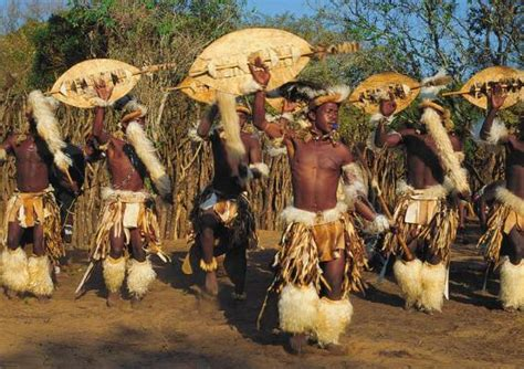 wonderful selection  traditional dances  africa