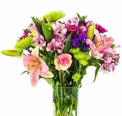 Bouquet Flower Flowers Floral Transparent Rose Tulip