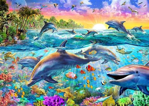 tropical dolphins  mgl meiklejohn graphics licensing