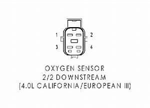 Jeep Tj O2 Sensor Wiring Diagram  Jeep  Auto Wiring Diagram