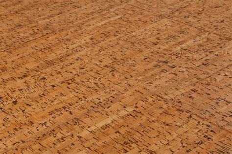 cork flooring information top 28 cork flooring information disadvantages of cork flooring information more from the