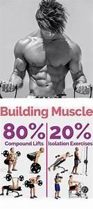 When Do Muscles Grow Best