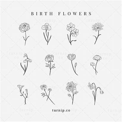 Flower Birth Clipart Tattoo Iris Minimalist Month