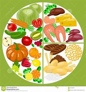 Healthy Eating Food Plate  Nutrition Balance  Stock Vector