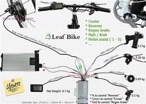 Monkey Bike Wiring Diagram