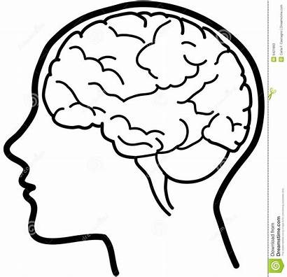 Humano Cuerpo Del Figura Brain Drawing Easy