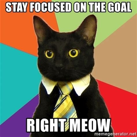 Business Cat Meme - stay focused on the goal right meow business cat meme generator