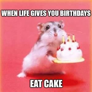 Happy Birthday Meme | Birthday Wishes, Greetings & Images
