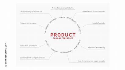 Characteristics Paas Focus Brand Shifting Retina Alters