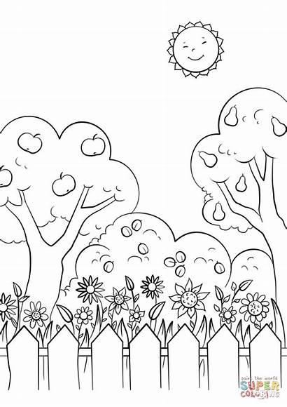 Coloring Garden Printable Dibujos Sun Jardin Flowers