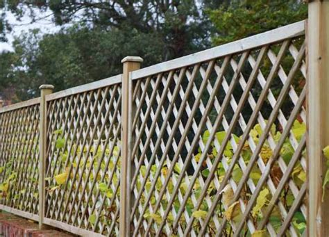 Outdoor Trellis Panels by Trellis Panels Wooden Trellis Panels Garden Trellis