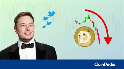 DOGE Price Plunged Mercilessly, Is Elon Musk Accountable?