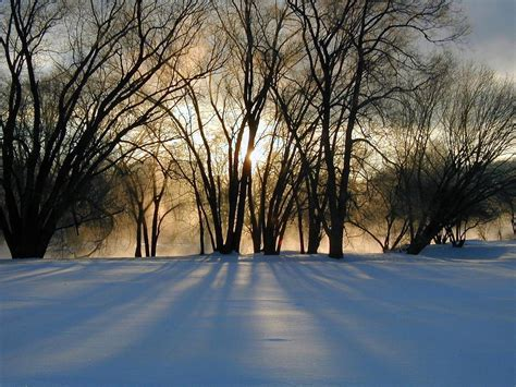 Free Winter Picture by Winter Solstice Blessings Spirit Sanctuary A